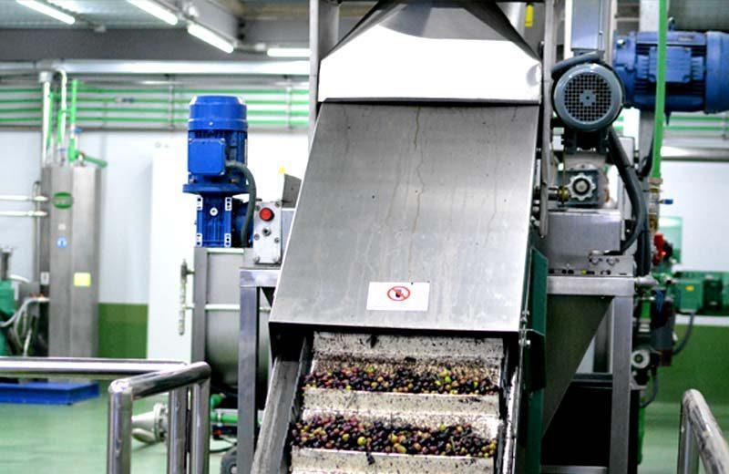 maquinaria-oleicola-servicios2